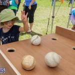 Somersfield Academy Fair Bermuda, May 16 2015-31