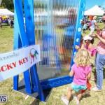 Somersfield Academy Fair Bermuda, May 16 2015-36