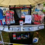 Somersfield Academy Fair Bermuda, May 16 2015-41