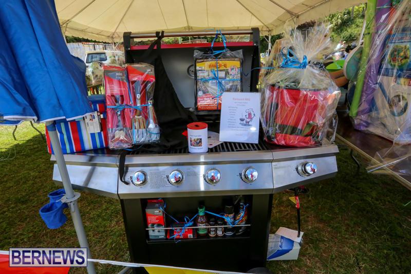 Somersfield-Academy-Fair-Bermuda-May-16-2015-41