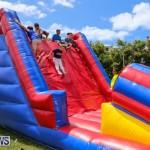 Somersfield Academy Fair Bermuda, May 16 2015-51