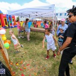 Somersfield Academy Fair Bermuda, May 16 2015-55