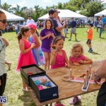 Somersfield Academy Fair Bermuda, May 16 2015-59