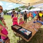 Somersfield Academy Fair Bermuda, May 16 2015-60