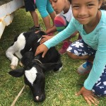 St. George's Children Fun Packed Day 2015May22 (20)