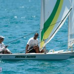 fitted-dingy-races-st-george-may-2015-15
