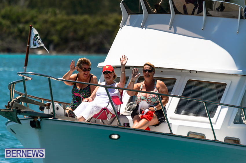fitted-dingy-races-st-george-may-2015-32