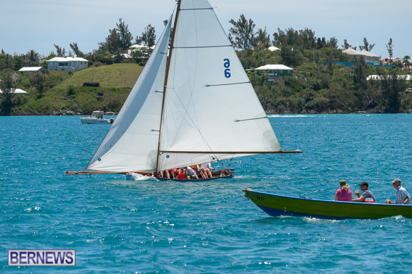 fitted-dingy-races-st-george-may-2015-44