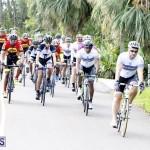tokio cycling may 2015 (11)
