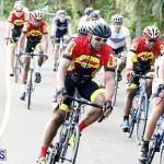 tokio cycling may 2015 (12)