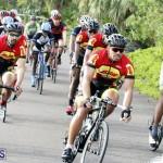 tokio cycling may 2015 (3)