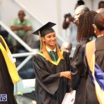 Berkeley Graduation Bermuda, June 25 2015-104