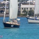 Bermuda One-Two Yacht Race, June 18 2015-1