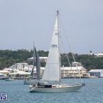Bermuda One-Two Yacht Race, June 18 2015-19
