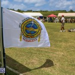 Bermuda Pow Wow, June 14 2015-1