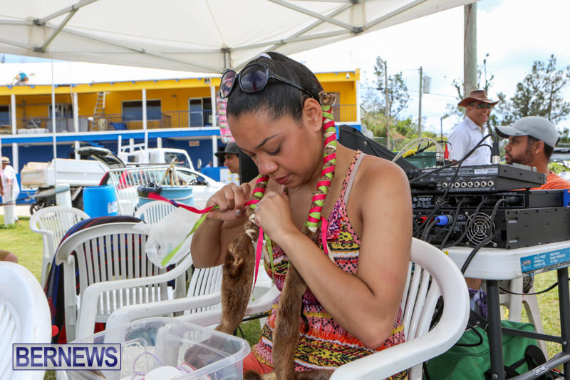 Bermuda-Pow-Wow-June-14-2015-2
