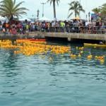 Bermuda Rubber Duck Derby June 2015 (15)