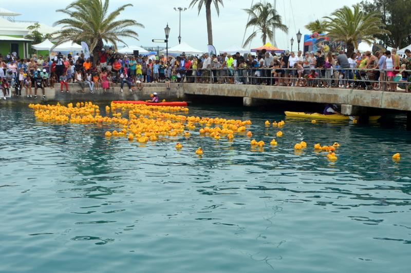Bermuda-Rubber-Duck-Derby-June-2015-15