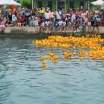 Bermuda Rubber Duck Derby June 2015 (18)