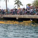 Bermuda Rubber Duck Derby June 2015 (24)