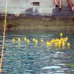 Bermuda Rubber Duck Derby June 2015 (28)