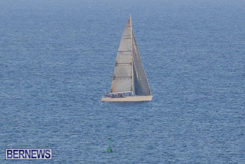 Mischievous Marion Bermuda, June 22 2015-5