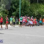 "NVCC North Village Harold ""Doc"" Dowling Day Bermuda, June 27 2015-71"