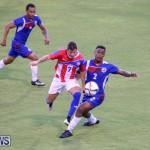 Puerto Rico vs Bermuda, June 5 2015-15