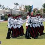 Queen's Birthday Parade June 13 2015 (53)