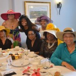 Tea With A Twist June 24 2015 (17)ls