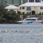 Tokio Millenium Re Triathlon Bermuda, May 31 2015-1