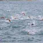 Tokio Millenium Re Triathlon Bermuda, May 31 2015-23