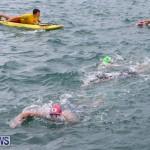 Tokio Millenium Re Triathlon Bermuda, May 31 2015-85
