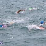 Tokio Millenium Re Triathlon Bermuda, May 31 2015-88