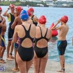 Tokio Millenium Re Triathlon School Try A Tri Bermuda, May 31 2015-1