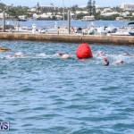 Tokio Millenium Re Triathlon School Try A Tri Bermuda, May 31 2015-12