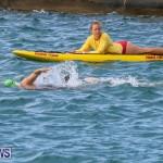 Tokio Millenium Re Triathlon School Try A Tri Bermuda, May 31 2015-31
