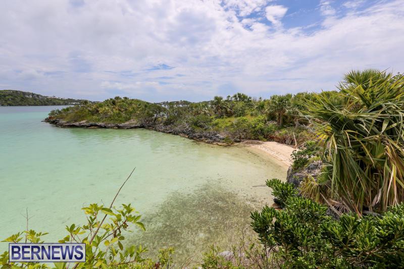 Trunk-Island-Bermuda-June-16-2015-18