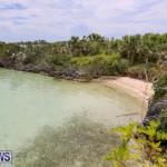 Trunk Island Bermuda, June 16 2015-19