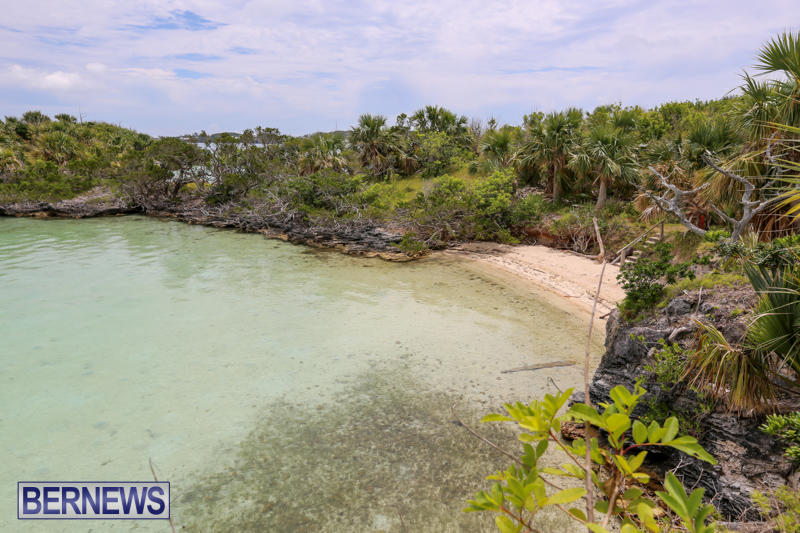 Trunk-Island-Bermuda-June-16-2015-19