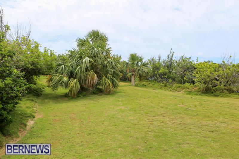 Trunk-Island-Bermuda-June-16-2015-29