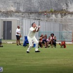 Under 11 Cricket 2015 June 9 (12)