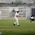 Under 11 Cricket 2015 June 9 (6)