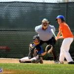 baseball June 25 2015 (1)