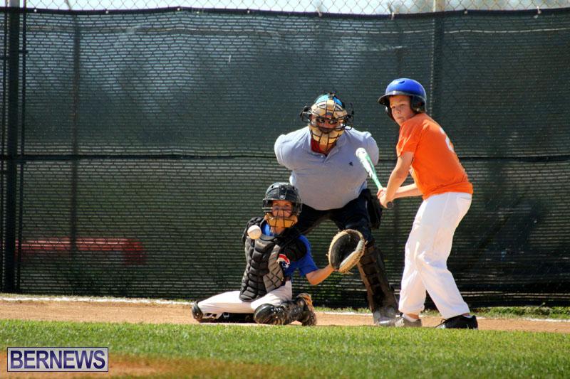 baseball-June-25-2015-1