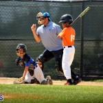 baseball June 25 2015 (10)