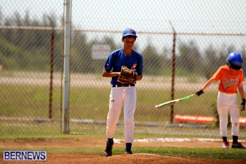 baseball-June-25-2015-11