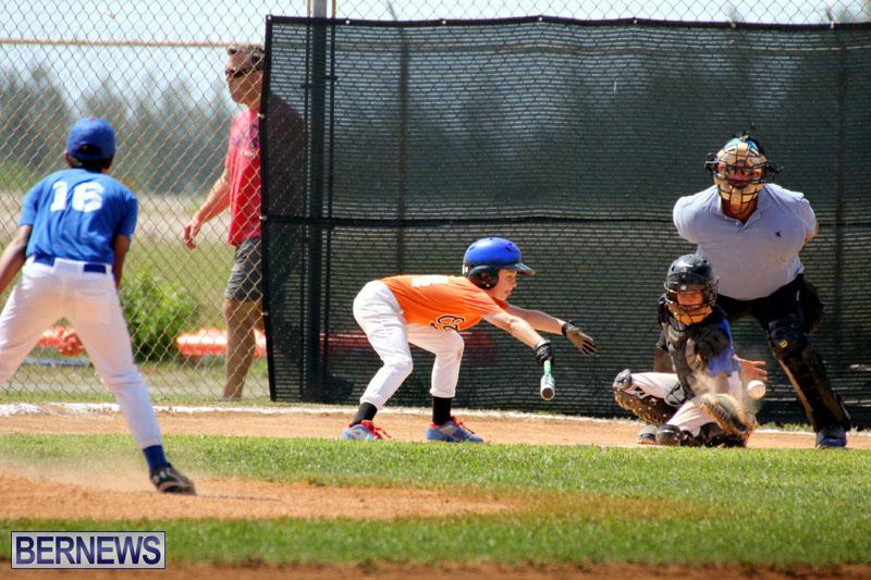 baseball-June-25-2015-12