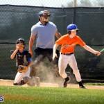 baseball June 25 2015 (14)