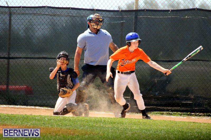 baseball-June-25-2015-14